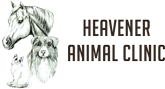 Vet in Heavener | Heavener Animal Clinic Logo